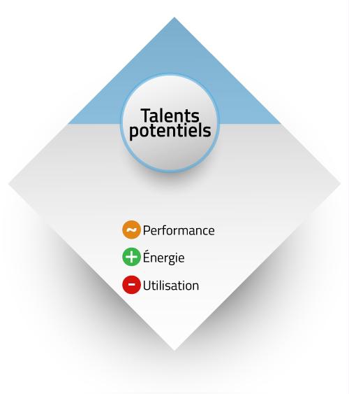 Résumé talents potentiels