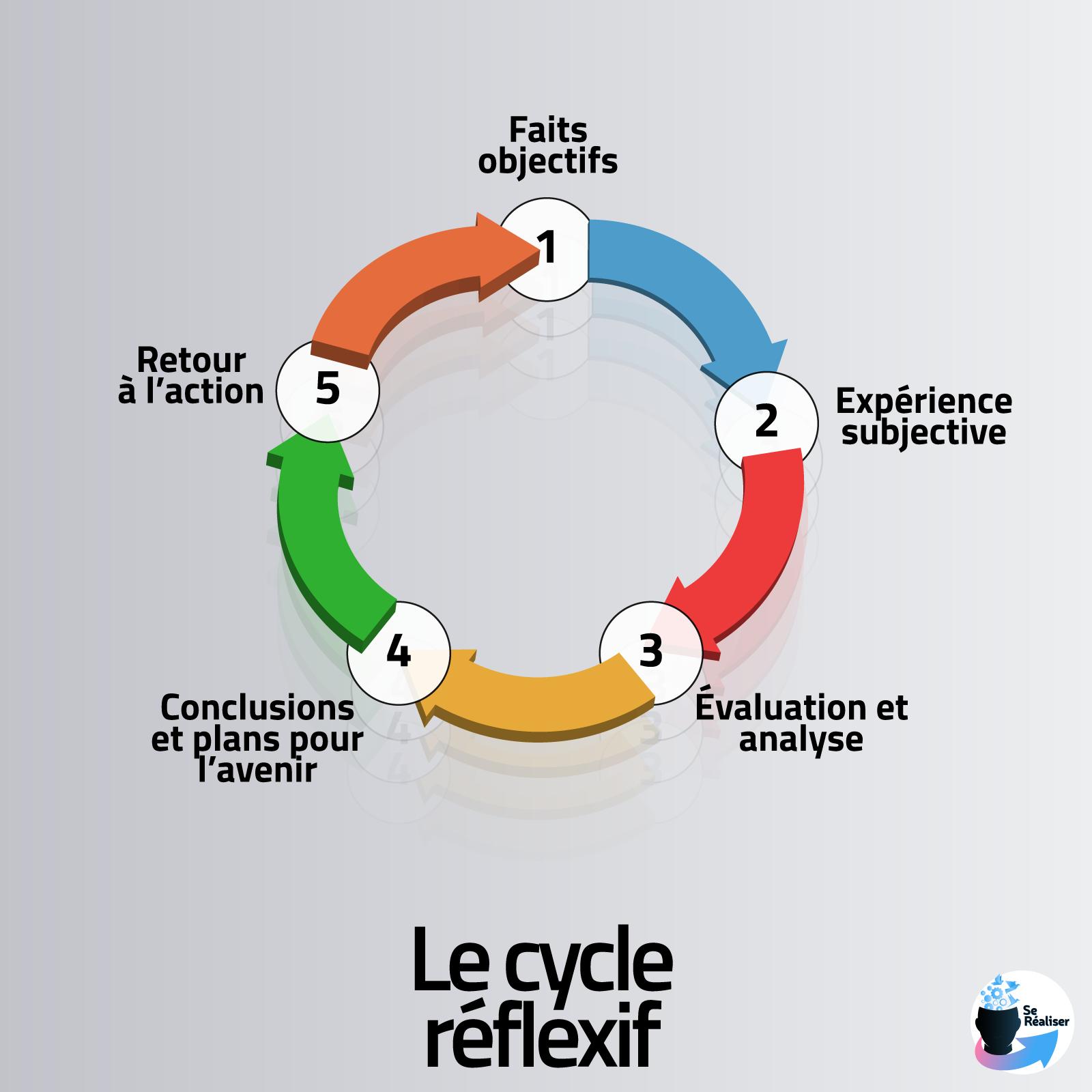 Représentation graphique du cycle réflexif